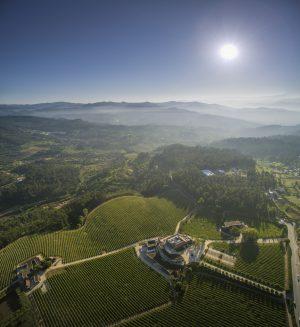 Vinho Verde Jahresverkostung in München