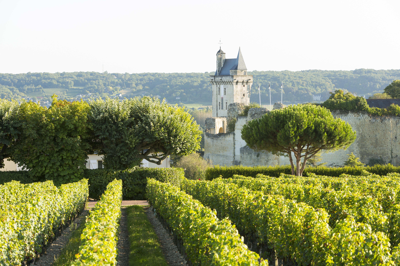 Die Weine der Loire auf der ProWein 2019