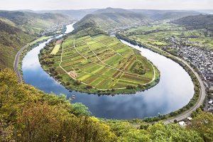 Landschaftsbild der Weinbauregion Mosel